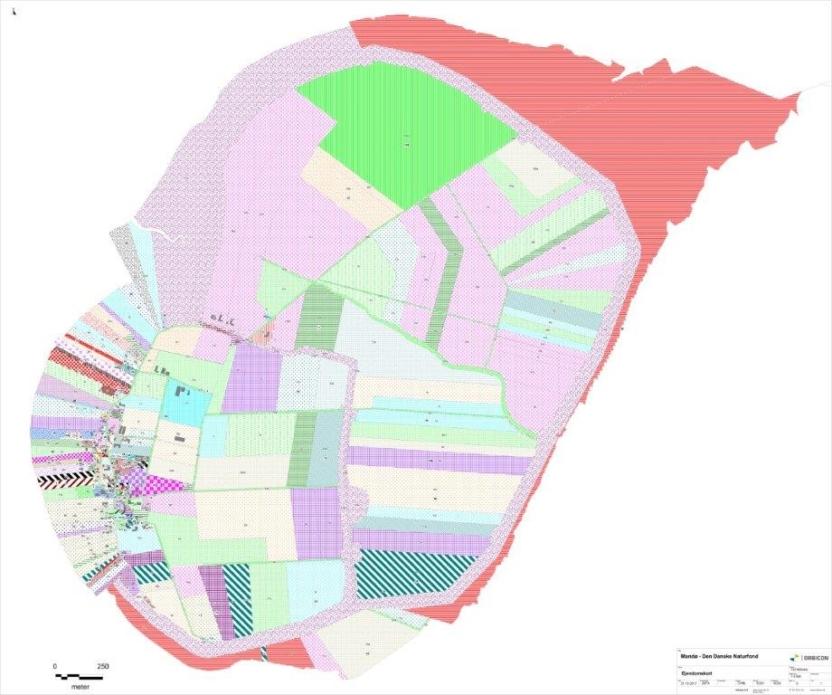 Grafik: Det klare, grønne område i nord er ejet af Naturstyrelsen og allerede udlagt til natur. Den Danske Naturfond har købt jordlodderne med det svagt rosa mønster lige op ad eller tæt ved Naturstyrelsens område.